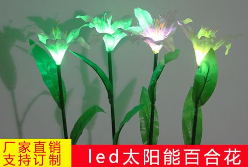 太阳能单头百合花