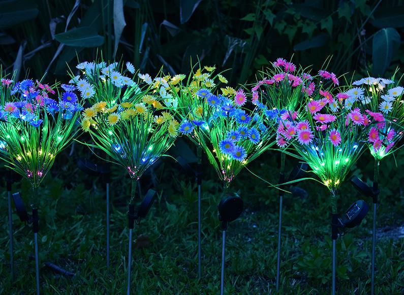 太阳能野菊花