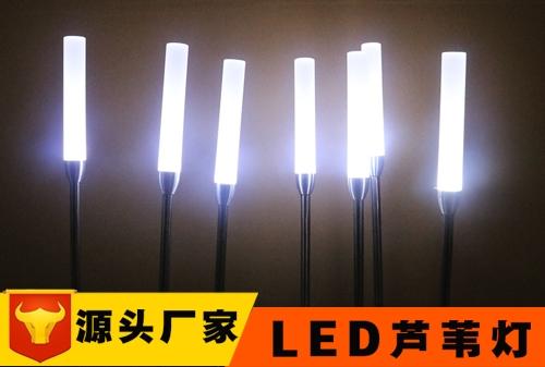LED芦苇灯定制