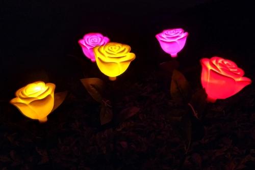 太阳能玫瑰
