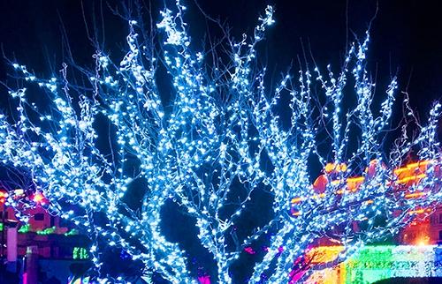 LED太阳能蓝色灯串