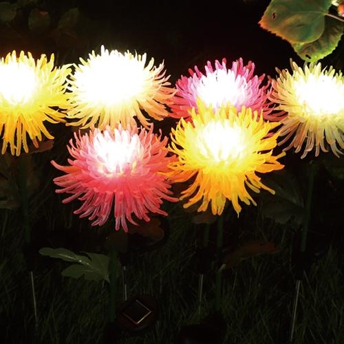 太阳能菊花